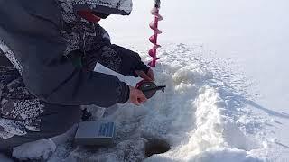 С Надюхой на рыбалку Отличный клёв радует рыбака Ловим на озере