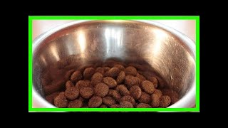 Breaking News | The raw truth about raw dog food