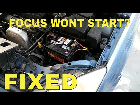 Ford Focus won't start things to look for