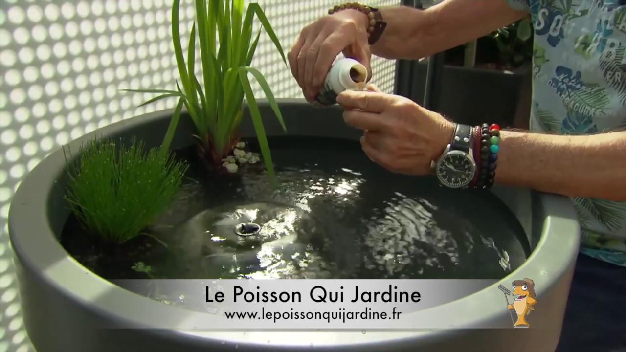 bassin terrasse ou balcon le poisson qui jardine
