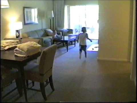 Running Into Screen Door