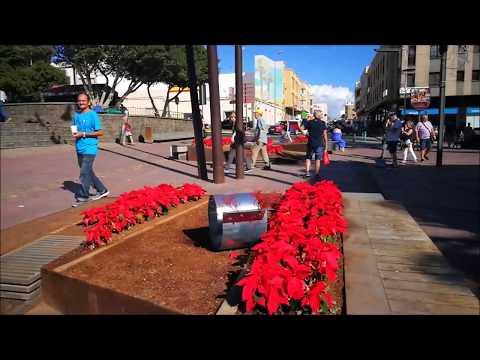Exposición FOU  de Luis Guardia disemina  35 caracoles por Puerto del Rosario