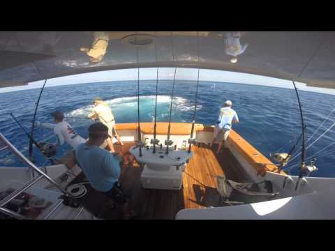 """THE PIT"" Costa Rica 2015-Stalker Sportfishing"