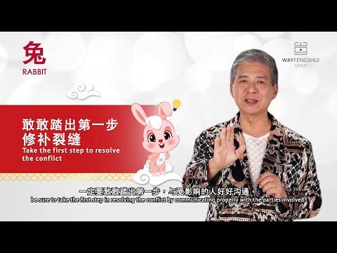 2020 RABBIT Zodiac Forecast (属兔运程) By Grand Master Tan Khoon Yong