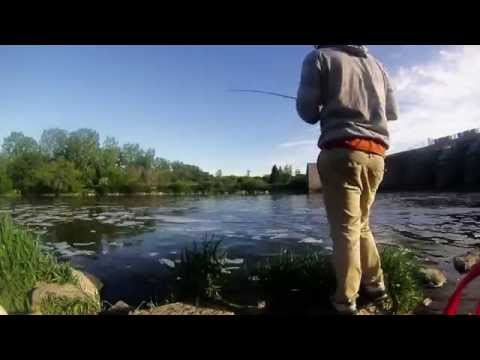 Fishing at the Dam - Time Lapse - Active Angling