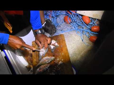 longline fishing 3 Lake Nicaragua 22 may 2014 canal