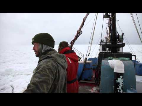 Seal Hunting In The Magdalen Islands