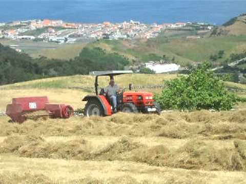 baling grass in island of flores azores
