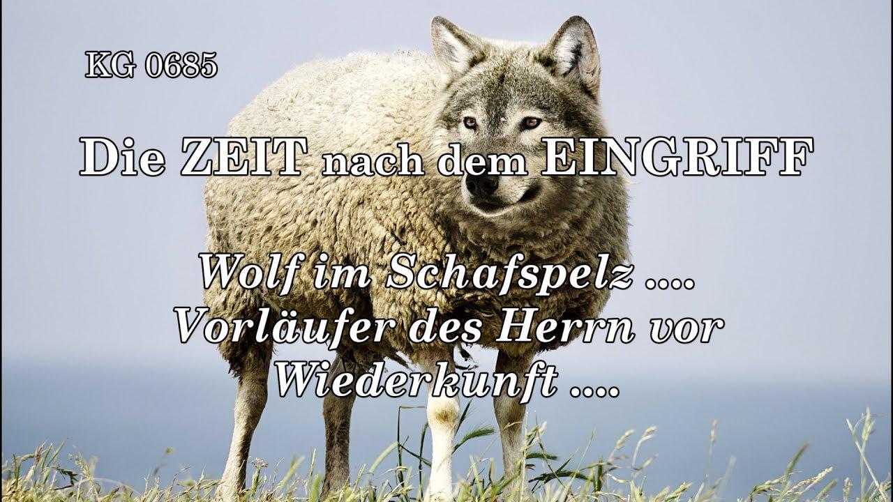 Wolf Im Schafspelz Auto