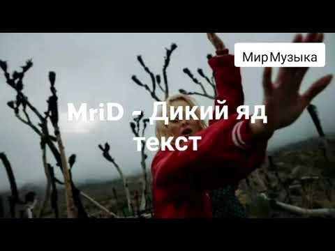 MriD - Дикий яд Текст песни Мир Музыка    #MriD  #Дикийяд #Текстпесни #МирМузыка