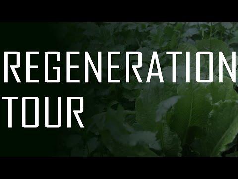 A walk through Soil Regeneration - the Foundation of Abundance