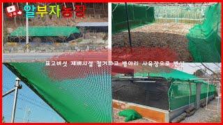 표고버섯 재배시설 철거하고 병아리 방사장으로 변경