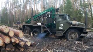 Жесть засадили урал лесовоз, порвали трос на лебедке , дороги упали!