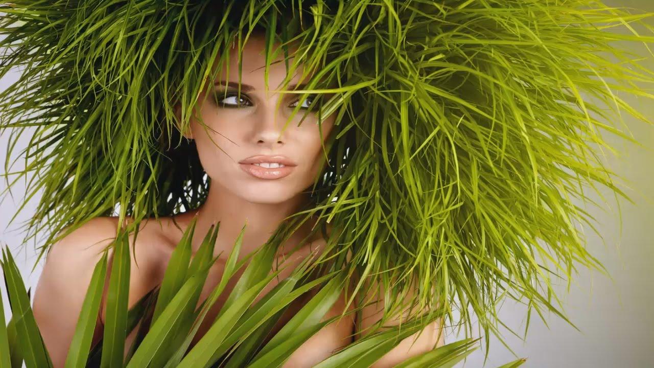Травы полезные для волос