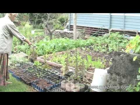 Sustainable Living on the Island of  Molokai – Preview