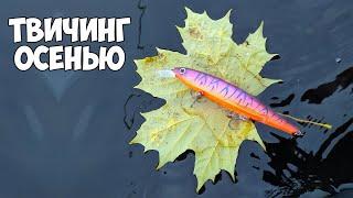 Твичинг воблеров осенью Щука в ноябре