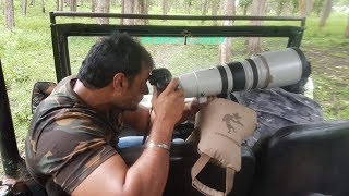 Challenging Star Darshan || DBoss || DCClix Exclusive || D Company || Nagarhole Forest Reserve