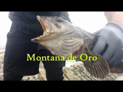 "Morro Bay Fishing: ""Lucky Reel""   Montana De Oro and KFC'd Cabazon"