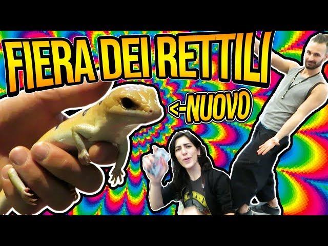 Exotica Pet Show - Due nuovi animali!!
