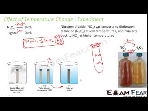 Chemistry Equilibrium part 21 Inert gas addition, catalyst & temperature change CBSE class 11 XI