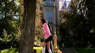 Superstar tree love scene to pauley perette and alicia di marco