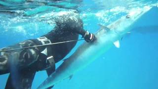 New Jersey to Key West Spearfishing - Music by Heavy Living