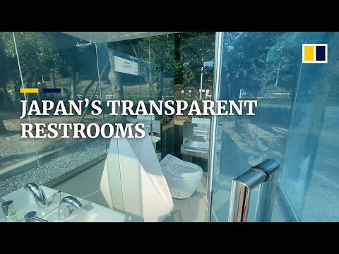 Japan's transparent restrooms hope to dispel stereotypes of dirty public toilets