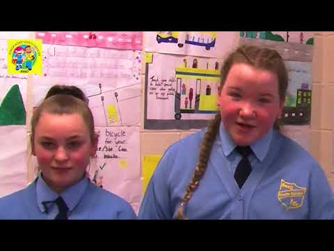 Junior Road Safety Officers South Dublin County Council