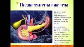 11 RP diabet modul 2