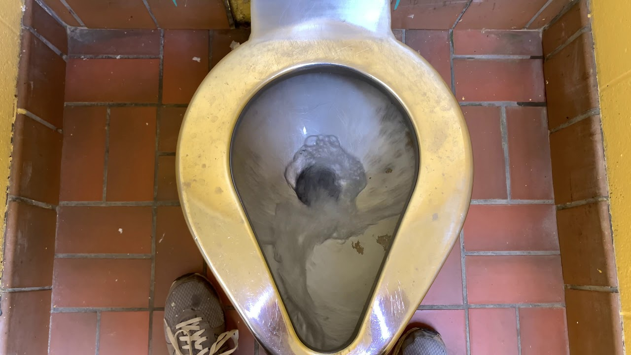 🚽 bathroom tour: metal toilets in a park in St. Charles MO