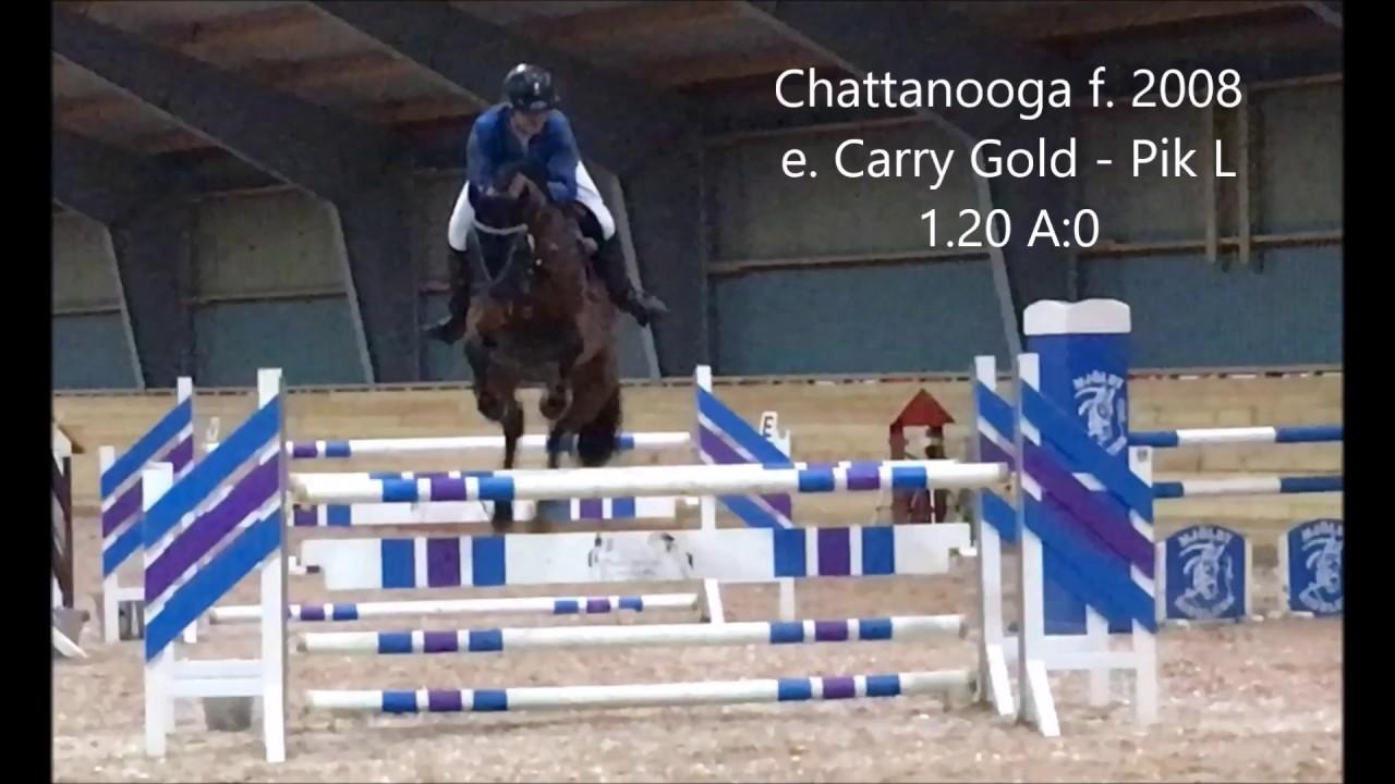 Download Chattanooga 1 20 Mjölby Ridklubb, Liljas Anläggning 170304