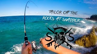 Spearfishing and Fishing The Gold Coast and Tweed (Snapper,D-Bar) 1000 REEL!!!