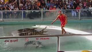 Шоу крокодилов в Паттае /Zoo