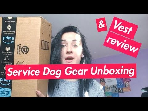 UNBOXING NEW SERVICE DOG GEAR