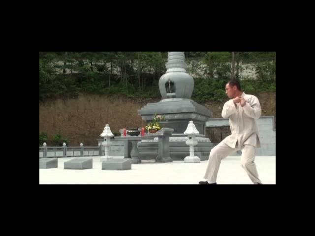 Shaolin Xiao Hong Quan.mp4