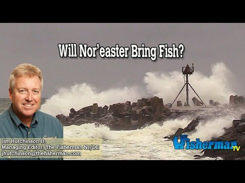 October 10, 2019 New Jersey/Delaware Bay Fishing Report With Jim Hutchinson, Jr.