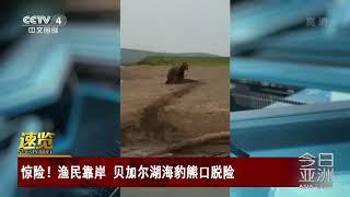 [今日亚洲]速览 惊险!渔民靠岸 贝加尔湖海豹熊口脱险| CCTV中文国际