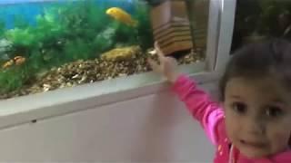 #LadyPo #Зоопарк #Развлечения Путешествие в Зоопарк