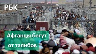 Турция и Узбекистан усилили границы из за беженцев из Афганистана Где примут бежавших от Талибана