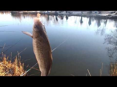 Рыбалка в марте на удочку у деда