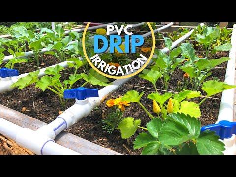 PVC Drip Irrigation System   EASY DIY