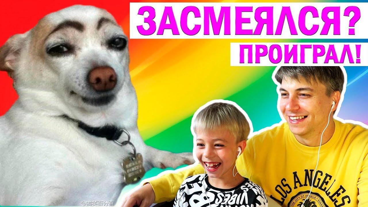 Не Засмейся Челлендж! +розыгрыш Машинок! Реакция на Смешные Видео про Животных!   Видеоролики Смешные про Животных Смотреть