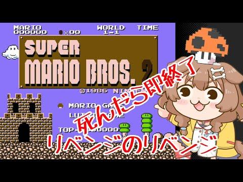 スーパーマリオブラザーズ2、しんだら即終了!!リベンジのリベンジ!!