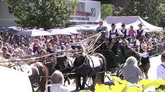 Pferdekutschengala in Berndorf bei Salzburg