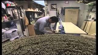 Der Tawaraya Ryokan in Kyoto   Herberge der Harmonie Doku über Kyoto Teil 1