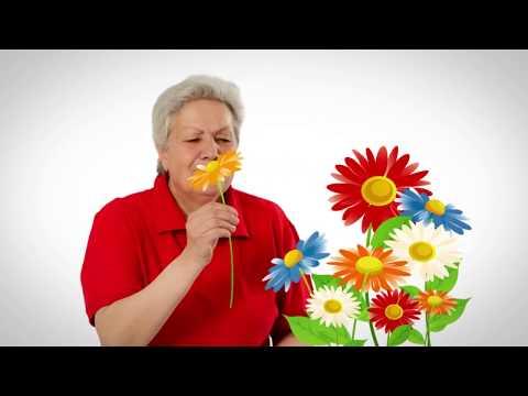 Голова садовая - ТОМАТЫ | Уход за рассадой