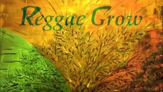 O`YABA   LOVE FIRE   Reggae   YouTube