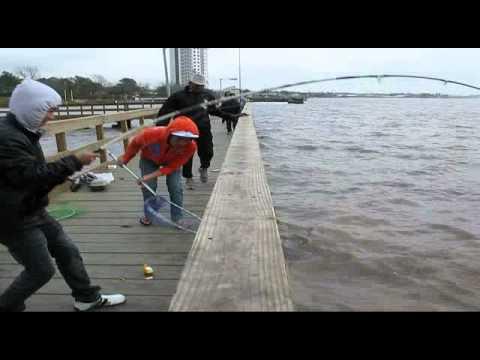 Video Di Cau Ca