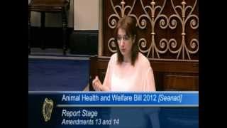 Clare Daly TD - Animal Welfare Bill