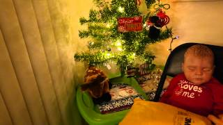 Reborn/Cat P.O. Box Opening by the Christmas Tree :)